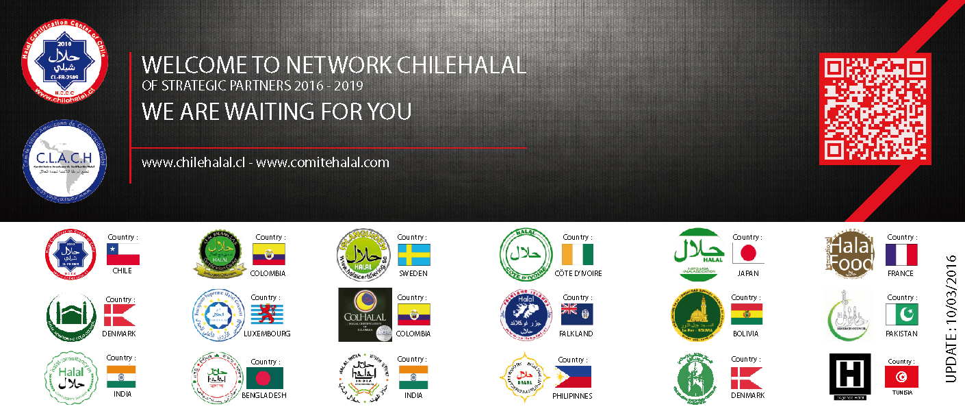 NEWSPARTNERS-CHILEHALAL-120